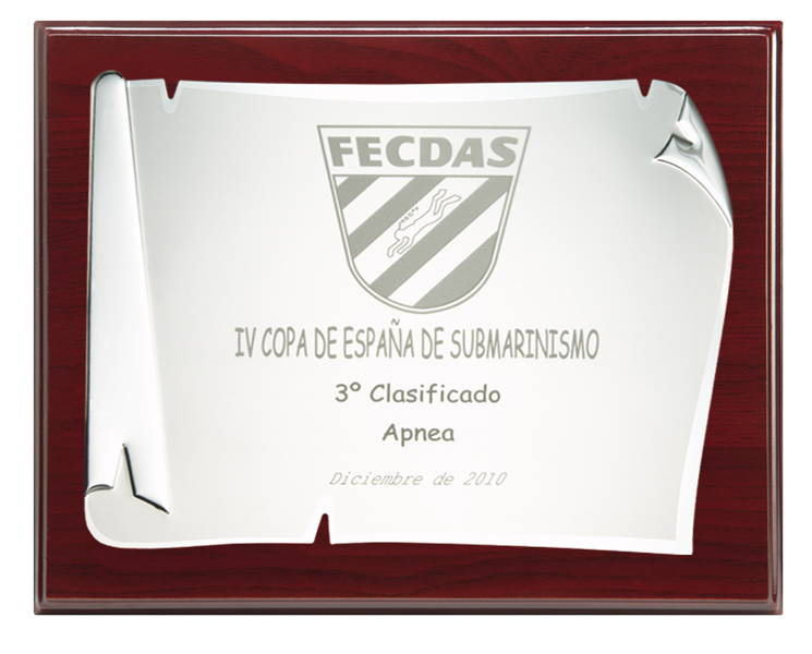 Placa Madera Conmemorativa WPN-6 Economic